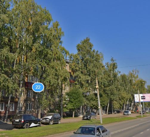 Туристы из Кирова испугались тополей-«убийц» в Казани