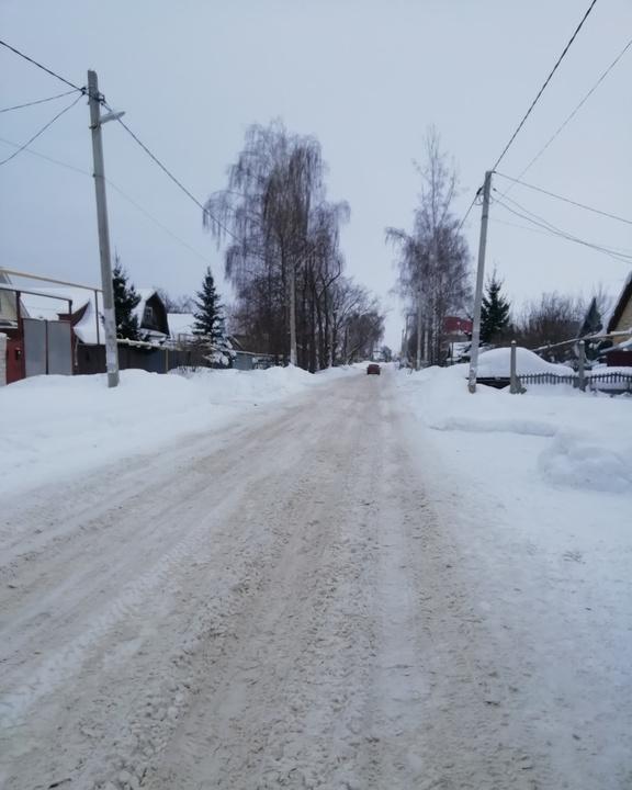 васильево зима
