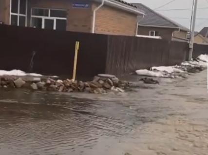 затопило поселок паводок
