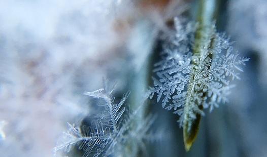 мороз снег зима