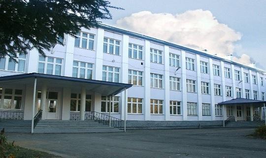Минобрнауки: Татарский вкачестве родного языка выбрали 69% школьников Татарстана