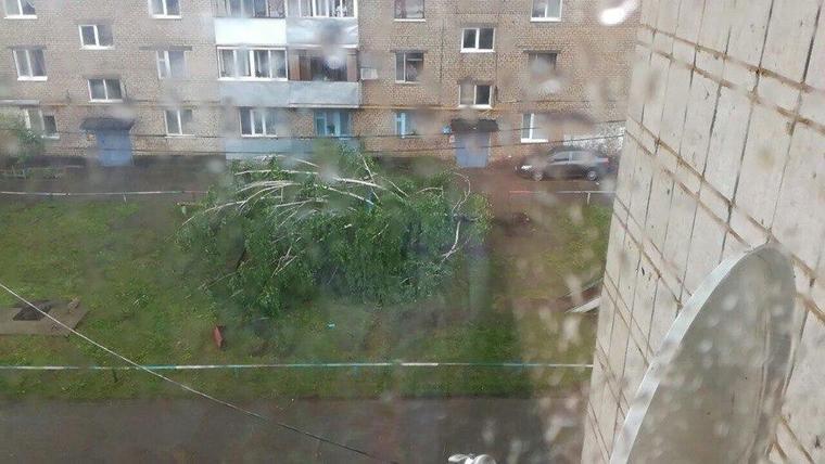 смерч в черемшанском районе