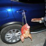 В Чебоксарах на машину автоледи прицепили окровавленную голову свиньи