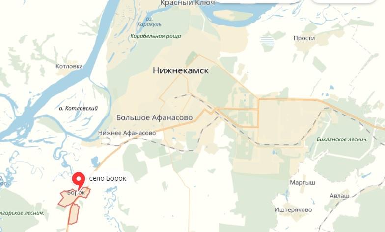 село борок татарстан нижнекамский район 3