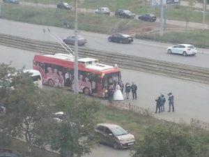 троллейбус свадьба